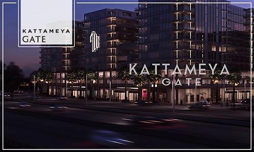 Kattameya Gate